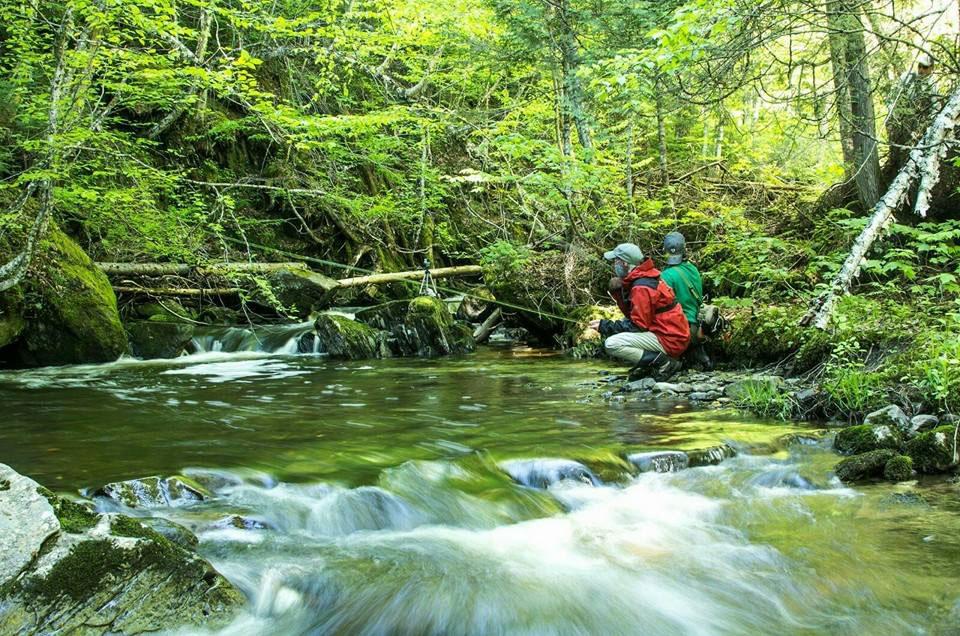 fishing, stream, brook trout, pittsburg, new hampshire, NH fishing, lopstick