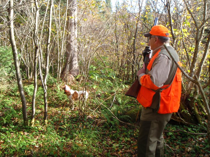 grouse hunting, lopstick, pittsburg, nh, new hampshire, hunting, guide service